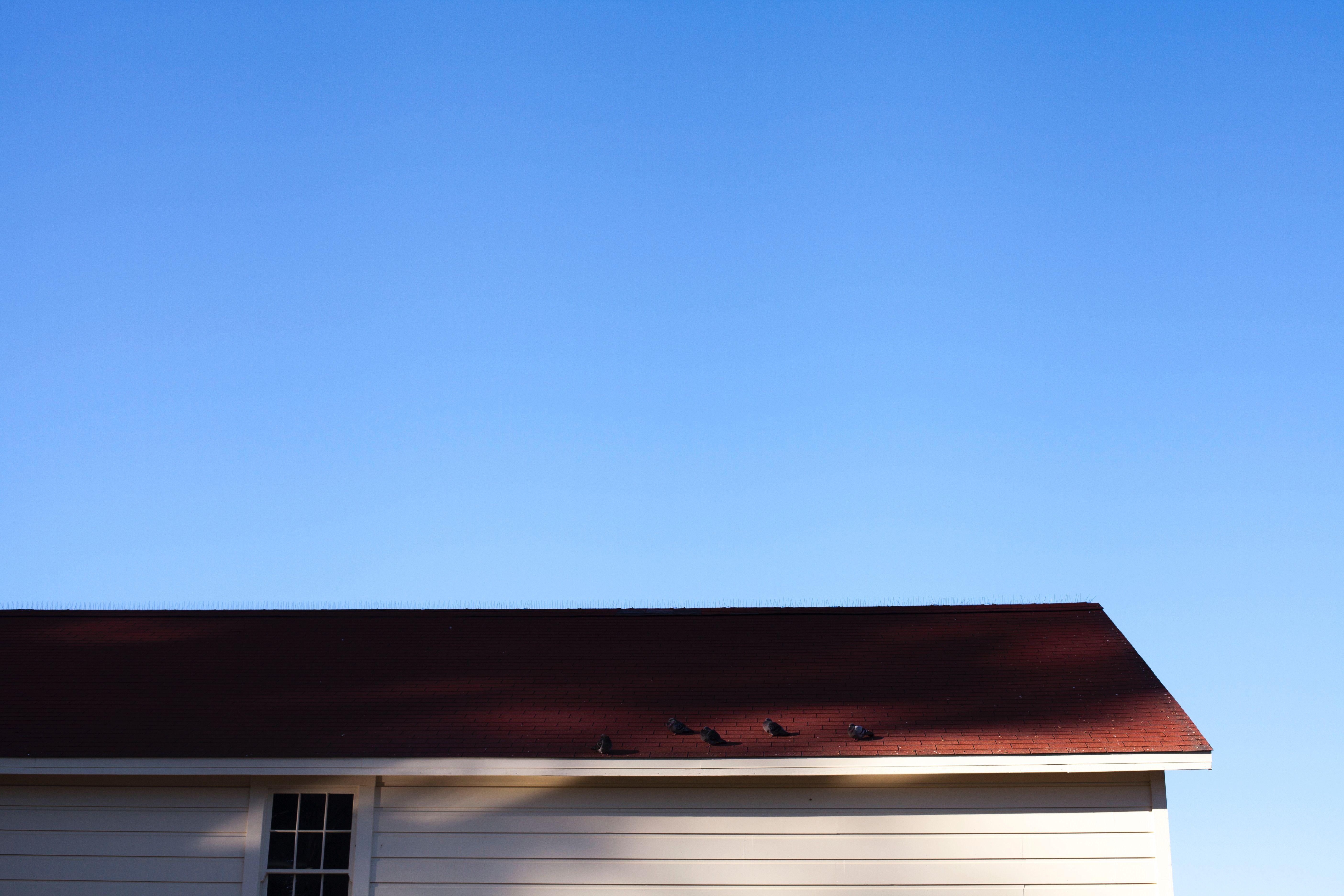 Choisir une toiture à haute performance énergétique
